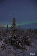 Alaska, Aurora, northern lights.