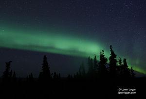 Aurora Streams